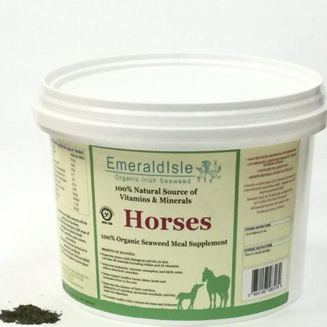 seaweed horse meal